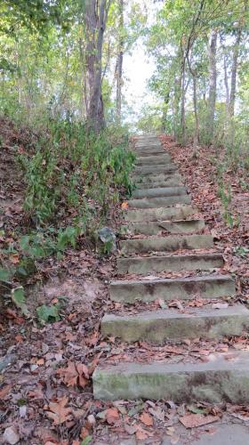 Novice-3rd-StairsLessTraveled-RhondaKastl