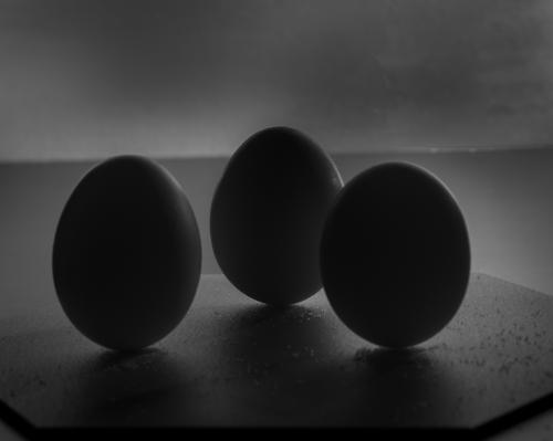 Advanced-Monochrome-3rd-Eggs-Randy Cordell