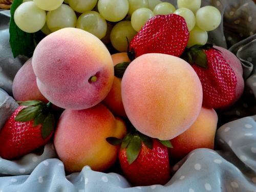 Novice-3rd-Fruitilicious-DonnaTaylor.jpg