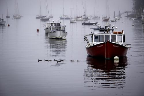 Advanced-Color-1st-Red Boat in Rockport-DonnaBowlick