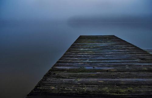 Advanced-Color-HM-Sweetwater Fog-JanetNewton