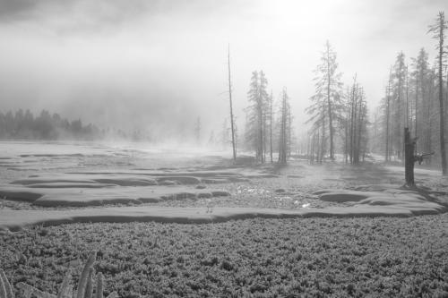 Advanced-Monochrome-2nd-Frosty Mist-GlennTaylor