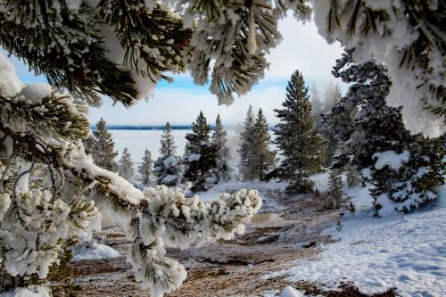 Advanced-Color-HM-Winter Magic-GlennTaylor