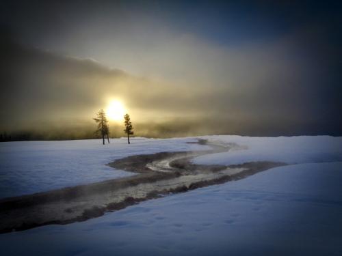 Novice-1st-Winter Glow-DonnaTaylor