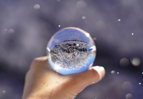 Novice-3rd-Snow Globe-Liz Frazier