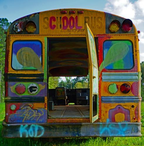 Novice-1st-The Magic School Bus-Liz Frazier