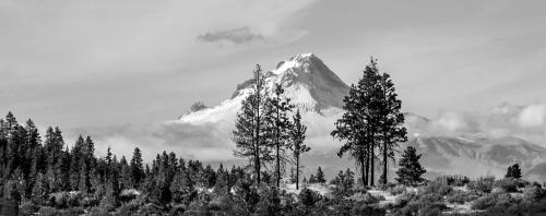 Advanced-Monochrome-2nd-Snow On The Mountain-Janet Newton
