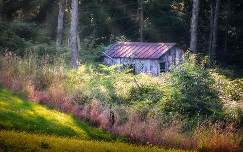 Advanced Color-1st-Old Homestead Barn-Tawni Blamble