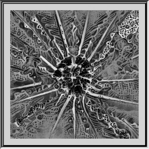 Advanced-Monochrome-3rd-Interlace-Stella Spyrou