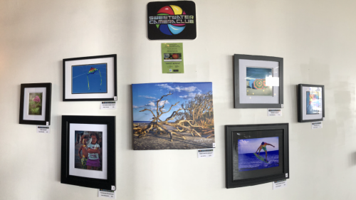 Sweet Spring Exhibit at Blu Rose Art Bistro 2018