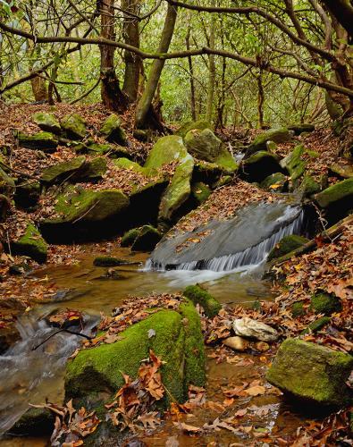 Black Rock Mountain Creek