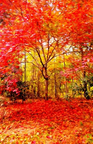 Janet Newton-FALL IS HERE