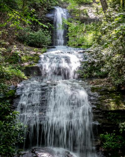 Wooded Water Fall