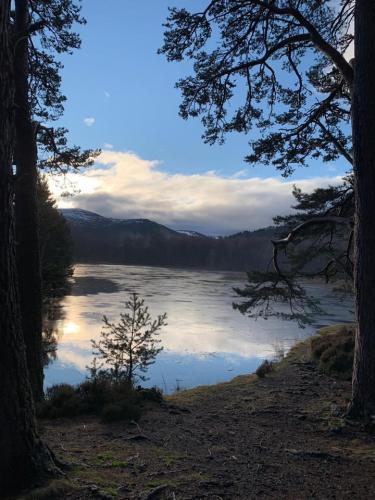 LynneDavidson-AviemoreScotland