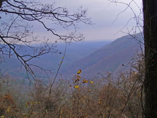 Novice-View From Blood Mountain-Gregory Taylor