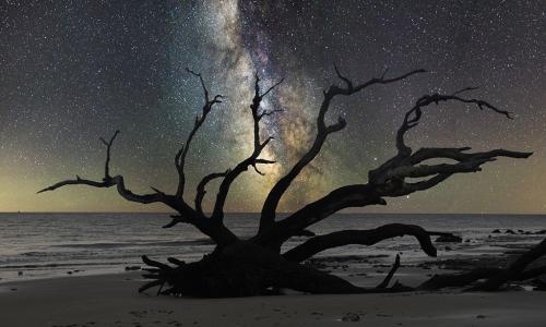 Under the Stars-KarenCox