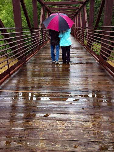 JanetNewton-Sweetwater Creek St. Park Bridge