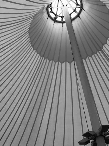Novice-Sunbrella-Tracie Joyner
